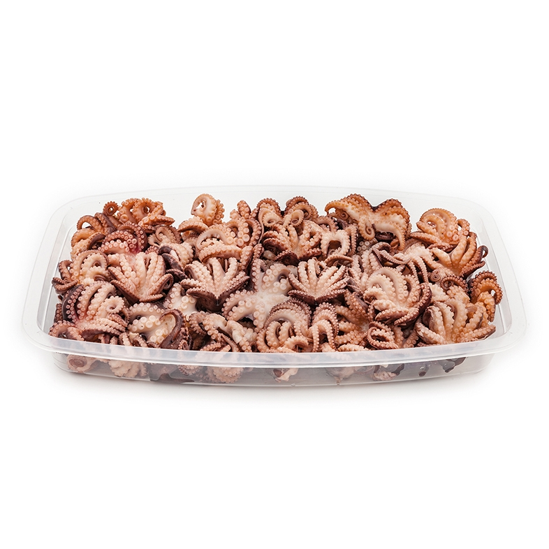 Small Octopuses 1kg
